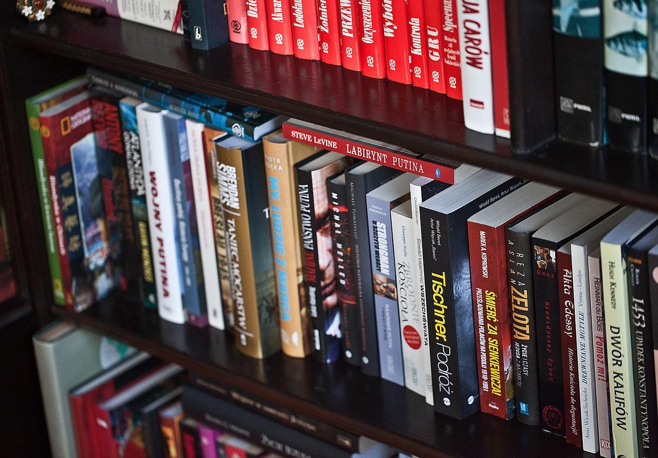 Book Library A Collection Of  - uroburos / Pixabay
